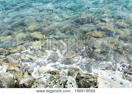 View of sea shore in summer day