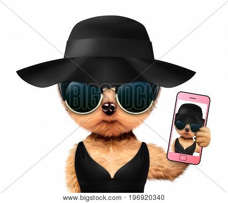 Funny animal taking selfie in t-shirt, sunglasses and straw hat. Concept summer holidays, travel vacation concept. Realistic 3D illustration.