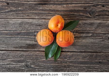 Apricots on a wooden table. View from above. Rough wooden table. Retro rural background. Bright orange apricots on old boards.