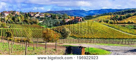 Scenic countryside with vineyards in autumn colors. Tuscany, Italy