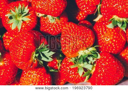 Close up of strawberry in a box - full filled frame.