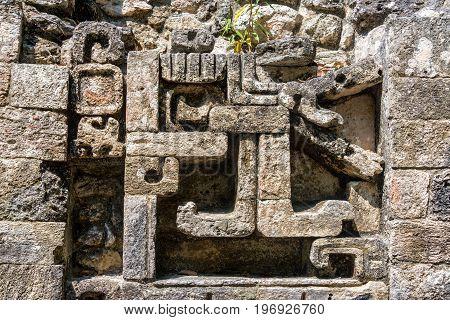 Mayan Ruins Details