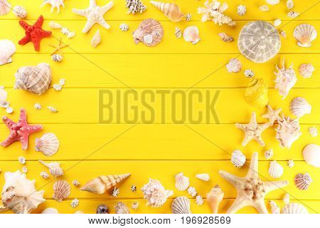 Seashells frame on the yellow wooden table