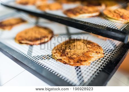 Dehydrator Sheets With Apple Slices And Cinnamon