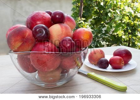 Ripe fruit on the table. Peaches, nectarine, plums. Beautiful sweet peaches, nectarine and plums