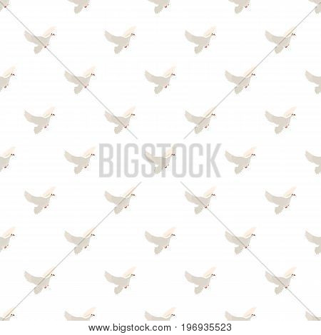 White pigeon pattern seamless repeat in cartoon style vector illustration