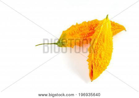 bitter melon or yellow momordica isolated on white background