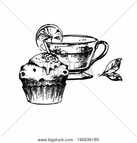 Hand Drawn Sketch of Tea Cup and Delicious Cupcake. Vintage Sketch. Great for Banner Poster