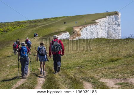 EAST SUSSEX UK - MAY 25TH 2017: Hikers walking along the white chalk cliffs at Beachy Head in East Sussex UK on 25th May 2017.
