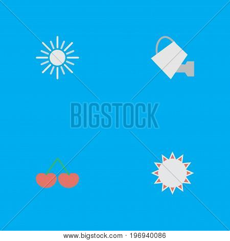 Elements Bailer, Berry, Sunny And Other Synonyms Fruit, Sunny And Watering.  Vector Illustration Set Of Simple Gardening Icons.