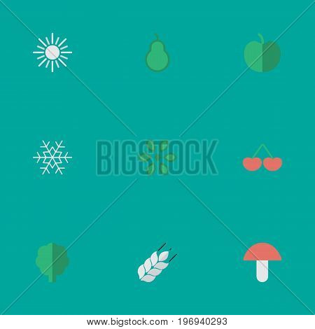 Elements Berry, Punching Bag, Fruit And Other Synonyms Snow, Berry And Tree.  Vector Illustration Set Of Simple Garden Icons.