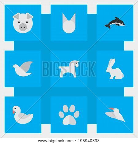 Elements Crane, Swan, Steed And Other Synonyms Dove, Cat And Crane.  Vector Illustration Set Of Simple Animals Icons.