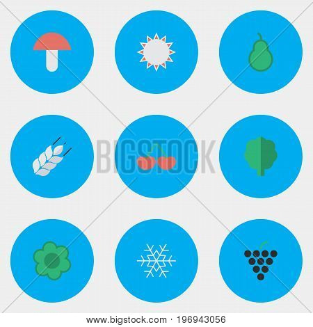 Elements Fungus, Berry, Flake Of Snow And Other Synonyms Cherry, Forest And Flake.  Vector Illustration Set Of Simple Garden Icons.
