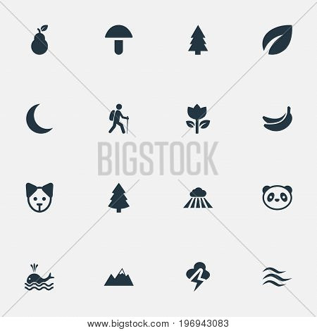 Elements Leafage, Lightning, Tropical Fruit And Other Synonyms Thunder, Cloud And Lightning.  Vector Illustration Set Of Simple Ecology Icons.