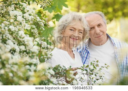 Happy senior couple near blossom bushes in spring park