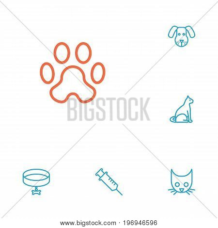 Collection Of Vaccination, Head, Dog And Other Elements.  Set Of 6 Animals Outline Icons Set.