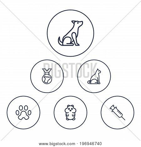Collection Of Hamster, Medal, Caw And Other Elements.  Set Of 6 Mammal Outline Icons Set.
