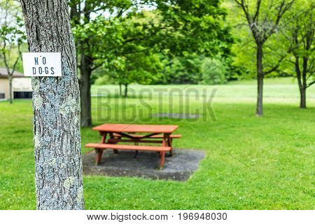 Rest Area On Road With Picnic Tables During Summer With Green Grass And No Dogs Sign