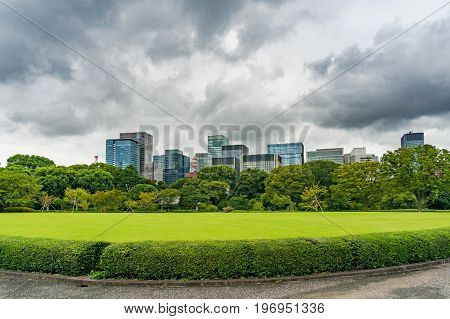 Bright green lawn and trees with modern cityscape on the background. Imperial Palace East Gardens public park in Tokyo Japan