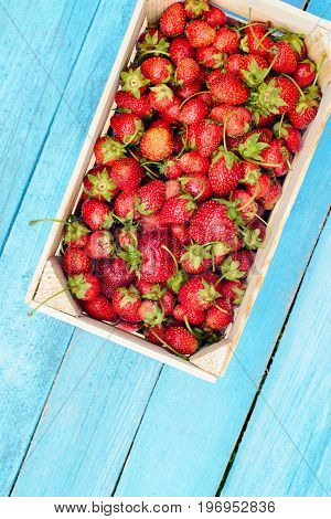 view from above fresh harvest ripe red strawberry in a wooden box on a wooden background