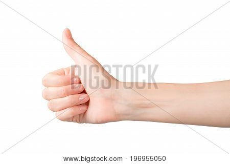 Woman hand showing thumb up gesture. Isolated on white clipping path included