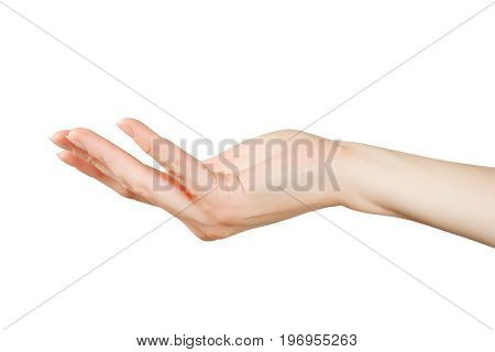 Beautiful woman hand holding or showing something. Isolated on white clipping path included
