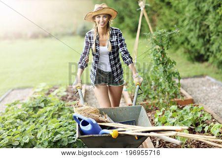 Adult woman working in vegetable garden