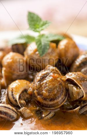 closeup of a ceramic bowl with spanish caracoles en salsa, cooked snails in sauce