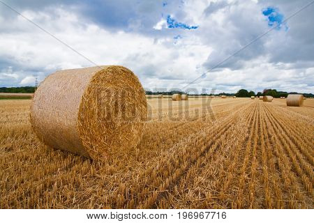 huge straw bale on an agricultural field in germany