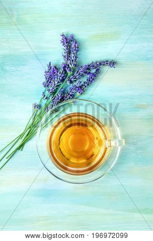 An overhead photo of a cup of vibrant tea with fresh lavender flowers, shot from above on a teal blue texture, with a place for text