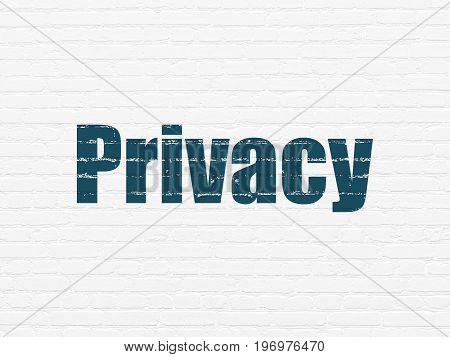 Security concept: Painted blue text Privacy on White Brick wall background