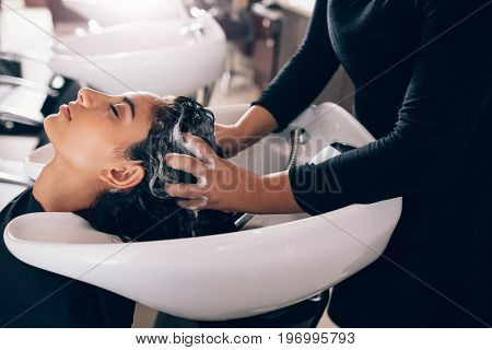 Woman applying shampoo and massaging hair of a customer. Woman having her hair washed in a hairdressing salon.