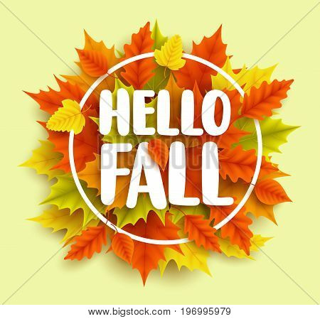 Hello fall text vector banner design with yellow and orange autumn maple leaves and circle frame in green background for seasonal marketing promotions. Vector illustration.