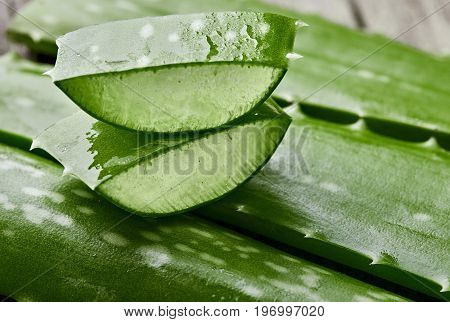 Aloe Vera.pieces Of Aloe Cutting. On Wooden Table