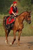 horse show in fancy-dress - Gypsy poster