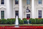 White House Door Red Flowers Chandelier Fountain Pennsylvania Ave Washington DC poster