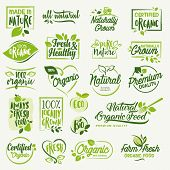 Organic food, farm fresh and natural product signs and elements collection for food market, ecommerce, organic products promotion, healthy life and premium quality food and drink. poster