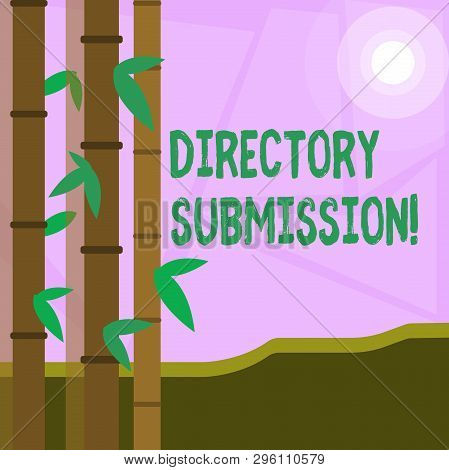 Word writing text Directory Submission. Business concept for main source to increase backlinks for your website Colorful Sets of Leafy Bamboo on Left Side and Moon or Sun with Round Beam. poster