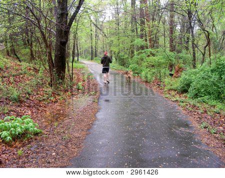 Walking Dog In The Rain