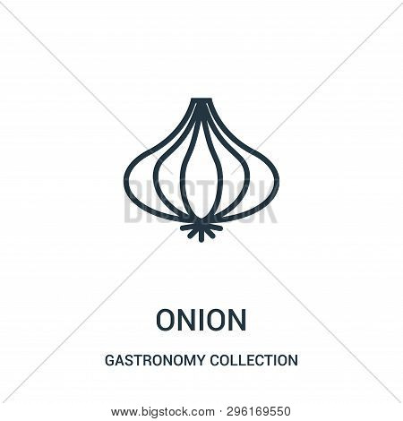 Onion Icon Isolated On White Background From Gastronomy Collection. Onion Icon Trendy And Modern Oni