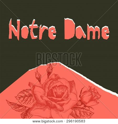 Notre Dame De Pary Poser. Torn Paper Style. Roses Flower Theme Creative Design Background For Social