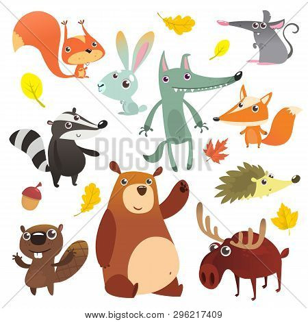 Cartoon Forest Animal Characters. Wild Cartoon Cute Animals Set. Big Set Of Cartoon Forest Animals F