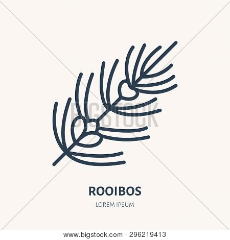 Rooibos Flat Line Icon. Medicinal Plant Leaves Vector Illustration. Thin Sign For Herbal Medicine, T