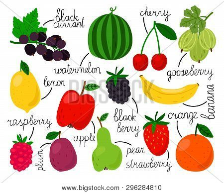 Hand Drawn Fruits. Illustrated Drawing Color Vector Fruits And Berries, Orange And Apple, Pear Ans L