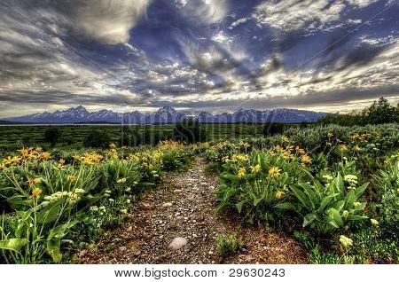 Path to Grand Tetons