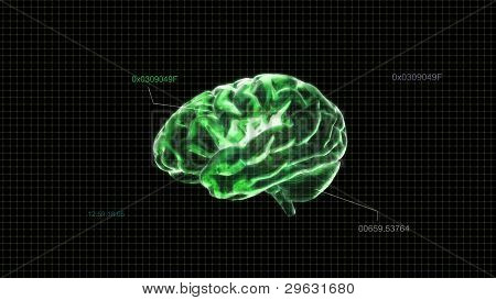 Green Crystal Brain Timecode