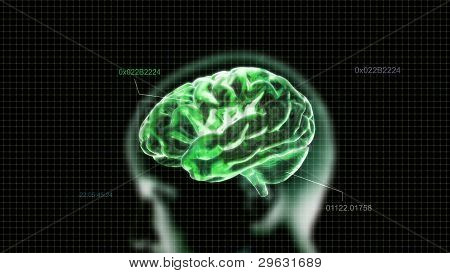 Green Crystal Brain And Head Timecode