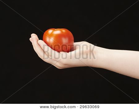 Childs hand with tomato and palm facing u