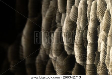 Carved wood waves texture, background. Raw carved wooden surface as abstract background. Wooden back-lit sea waves.