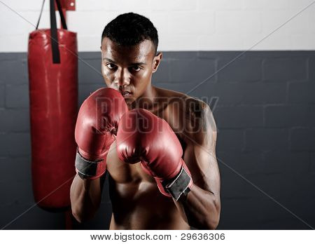 portrait of a confident young boxer in the gym